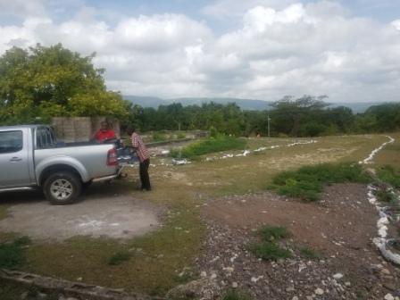 socgm - jamaica